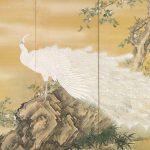 Digital TV Art - Asian Art - Mochizuki-Gyokkei - White-Peafowl